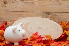 Autumn Time Saving com mealheiro foto de stock royalty free