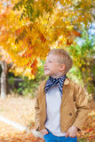 Autumn time Stock Photography