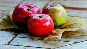 Autumn time. Still life with a three apples on the autumn leaves Stock Images