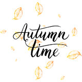 Autumn time text - hand painted lettering with orange leaves. Autumnal brush calligraphy on background of yellow leaf, vector for card, poster, print, flyer Royalty Free Stock Image