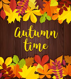 Autumn time.Wooden autumn background with yellow red green leaves and lettering Stock Photography