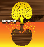 Autumn time of the year Royalty Free Stock Image