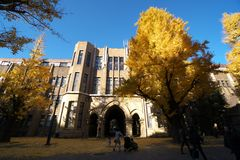autumn Tokio Uniwersytet Tokio, Japonia Zdjęcie Stock