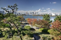 Autumn in Tokyo bay, Japan. Autumn in hidden park in Tokyo Bay Japan with view on skyscrapers and bridge on background during nice sunny day stock photo