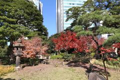 Autumn in Tokyo Royalty Free Stock Images