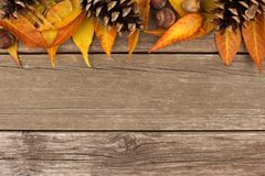 Autumn top border against rustic wood Stock Images