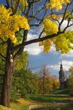 Autumn in town. Trees, leafs, pond and cathedral in autumn scene in town. Dresden, Germany. Vertical Stock Photography