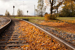 Autumn track Royalty Free Stock Photography