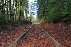 Autumn Tracks Royalty Free Stock Photos