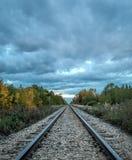 Autumn Tracks Fotografie Stock Libere da Diritti