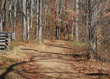 An Autumn Trail. A trail through the forest seems to be inviting us to slow down and meander Stock Photos