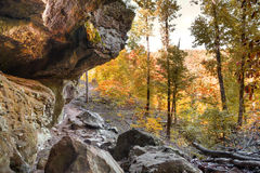 Autumn Trail Stock Photography