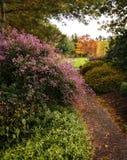 Autumn Trail Fotografie Stock Libere da Diritti
