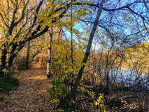 Autumn trail along the north Saskatchewan river. In the Edmonton River valley. Gorgeous and secluded royalty free stock image
