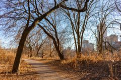 Autumn Trail with Bare Trees near North Pond in Lincoln Park Chicago royalty free stock photo