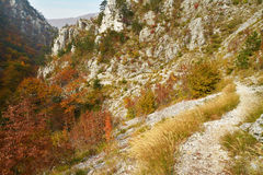 Autumn trail Royalty Free Stock Image
