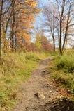 Autumn Trail colorido en un parque Imagen de archivo libre de regalías