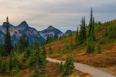Autumn Trail in Mt Rainier National Park, Washington State Stockfotos