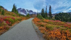 Autumn Trail, Mt Rainier National Park, Washington State Images libres de droits