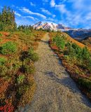Autumn Trail, Mt Rainier National Park, Washington State Images stock