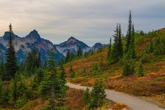 Autumn Trail in Mt. Rainier National Park, Washington State Stock Photos