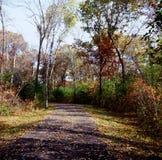 Autumn Trail Overview - Minnesota Arkivbilder