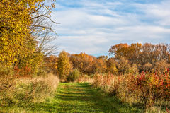 The Autumn Trail Royalty Free Stock Photo