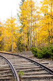 Autumn Train Tracks. Curving train tracks surrounded by changing aspen tree leaves in the Colorado Mountains royalty free stock images