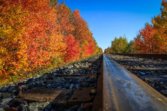 Autumn Train vient Photos libres de droits
