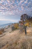 Autumn in Transylvania 2 Royalty Free Stock Photos
