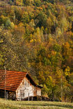 Autumn in Transylvania Stock Photo