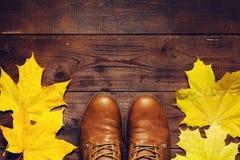 Autumn travel background Royalty Free Stock Image