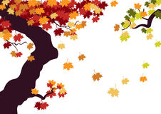 Autumn tree. With falling leaves. Created in Illustrator Stock Photography