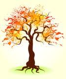 Autumn tree. Beautiful painting ornate autumn tree Royalty Free Stock Photos
