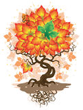 Autumn tree. Vector illustration of tree with yellow-red leaves and one green Royalty Free Stock Photo