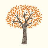 Autumn tree. A  illustration of an autumn tree Stock Photo