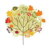 Autumn tree. With colored leaves stock illustration
