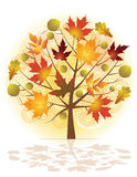 Autumn tree. Royalty Free Stock Photos