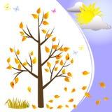 Autumn tree. Stock Image