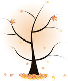 Autumn tree. With fallen leaves Royalty Free Stock Photography