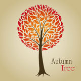 Autumn tree. Tree vector illustration with red leafs. Nature symbol graphic design Royalty Free Stock Photo