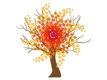 Autumn tree Royalty Free Stock Photo
