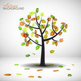 Autumn tree. Background with leaves Stock Image