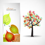 Autumn tree. Background with leaves Stock Photography