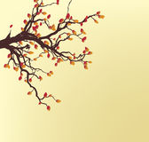 Autumn Tree. Autumn colored leaves adorn a scraggly tree on a yellow background Royalty Free Stock Image