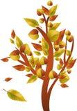 Autumn tree. With leafs, vector illustration Stock Photos