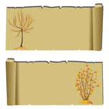 Autumn tree. Abstract cute autumn trees on special papyrus paper background Stock Photography