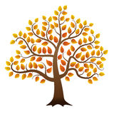Autumn tree. Abstract vector autumn tree on white background Stock Photography