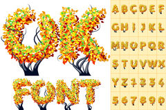 Autumn tree alphabet Royalty Free Stock Photos