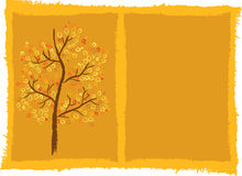 Autumn tree background Royalty Free Stock Photo